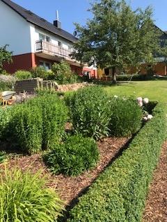 Sommerimpressionen Praxis Burmester und Garten in Aerzen